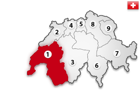 Gutachter in der Schweiz PLZ 1